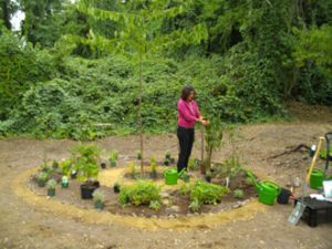 ball micro food forest garden 0091