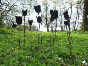 frese schwarze tulpen entwurf
